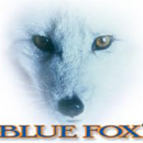 Blue Fox Spoons