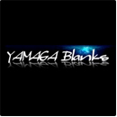 Yamaga Blanks Spinning Rods