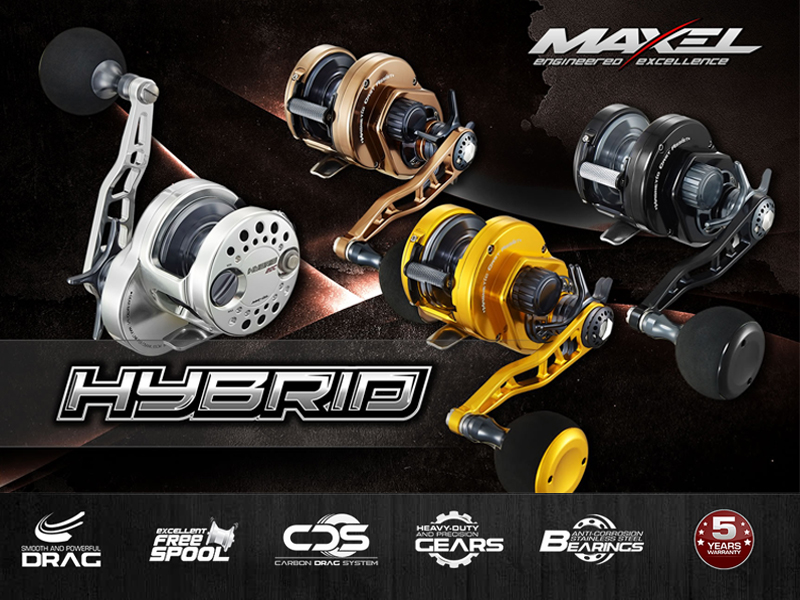 Maxel Hybrid HY20CL (Type: Left hand, Color:Gold)